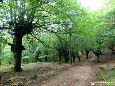 Senderismo Valles Pasiegos, Cantabria; puente de mayo,diciembre; rutas de senderismo